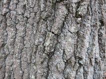 Текстура расшивы предпосылки 0008 поверхностная Стоковая Фотография RF