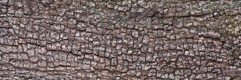 Текстура расшивы Стоковые Изображения RF