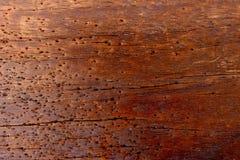Текстура древесины предпосылки стоковое фото