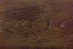 Текстура древесины дуба Стоковая Фотография RF