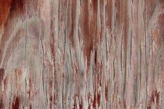 Текстура древесины Стоковые Изображения RF