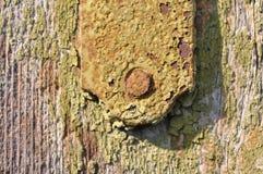 Текстура ржавой поверхности металла с треснутой краской Стоковая Фотография RF