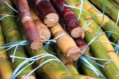 текстура сахарного тростника как славная естественная предпосылка Стоковое фото RF