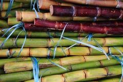текстура сахарного тростника как славная естественная предпосылка Стоковая Фотография RF