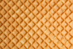 Текстура сброса поверхности печенья или favi, абстрактной задней части Стоковое Изображение