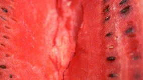 Текстура свежего зрелого арбуза Конец макроса вверх, взгляд сверху 4k акции видеоматериалы