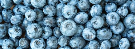 текстура свежих фруктов голубики предпосылки Голубики текстурируют близко вверх Стоковое Фото
