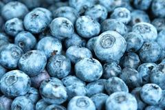 текстура свежих фруктов голубики предпосылки Голубики текстурируют близко вверх Стоковые Изображения RF