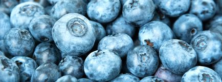 текстура свежих фруктов голубики предпосылки Голубики текстурируют близко вверх Стоковая Фотография RF