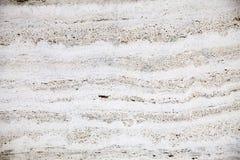 Текстура светлой бетонной стены с sturcturs в черноте стоковые изображения rf