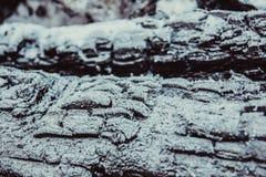 Текстура сгоренной древесины Стоковое Изображение