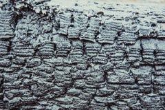 Текстура сгоренной древесины Стоковая Фотография RF