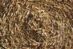 Текстура сена Стоковое Изображение RF