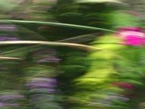 текстура скорости нерезкости флористическая Стоковое фото RF