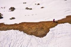 Текстура снежка для предпосылки Стоковая Фотография