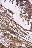 Текстура снежка для предпосылки Стоковая Фотография RF