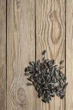 текстура солнцецвета семян предпосылки черная стоковые фото