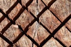 Текстура спиленного диагональю пня дерева стоковые фотографии rf