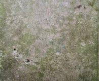 Текстура - старая надгробная плита Стоковые Изображения
