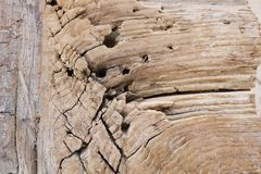 Текстура старого деревянного бара стоковая фотография