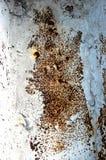 Текстура старой белизны заржавела лист утюга металла ржавчина предпосылки детальная Стоковые Фото