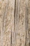 Текстура старой деревянной треснутой поверхности доски Стоковое фото RF