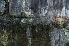 Текстура старой каменной стены покрыла зеленый мох стоковое фото rf