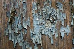 Текстура старой краски на дереве стоковое фото