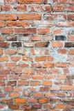 Текстура старой оранжевой кирпичной стены Стоковые Изображения