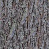 Текстура старой расшивы безшовная стоковые изображения rf