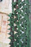 Текстура старой треснутой древесины, покрашенная в сини на предпосылке старой кирпичной стены стоковая фотография