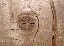Текстура старых серых доск с глубокими разрезом и узлом Стоковые Фото