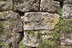 Текстура стены сделанной больших утесов Стоковые Изображения