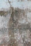 Сломленная бетонная стена Стоковое Изображение