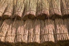 текстура сторновки предпосылки близкая вверх Текстура крыши соломы Стоковая Фотография