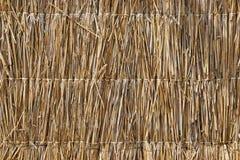 текстура сторновки Стоковая Фотография
