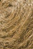 текстура сторновки bale Стоковая Фотография RF