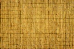 Текстура сухих тростников Желтые тростники Загородка сделанная из тростников стоковые изображения rf
