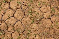 Текстура сухой почвы стоковое изображение rf