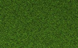 текстура травы Стоковая Фотография RF