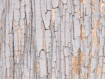 Текстура треснутой голубой краски Стоковые Фотографии RF