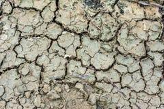 Текстура треснутой земли Стоковая Фотография RF