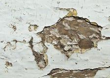 Текстура треснутой краски Стоковая Фотография