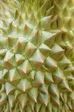 Текстура дуриана Стоковое Изображение