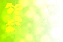 Текстура цвета предпосылки абстрактная Стоковое Изображение