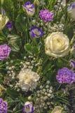 Текстура цветка Стоковое Фото