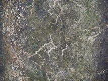 Текстура цемента Стоковые Фото