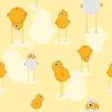 текстура цыпленока безшовная Стоковая Фотография