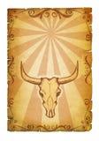 текстура черепа коровы старая бумажная Стоковая Фотография