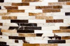 Текстура шерстей Стоковая Фотография